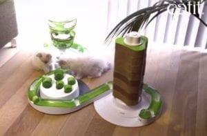 Aire de jeu pour chat